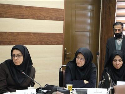 گالری تصاویر برگزاری نشست دانشافزایی استادان با موضوع مدیریت خشم در دانشکده داروسازی (جلسه دوم)